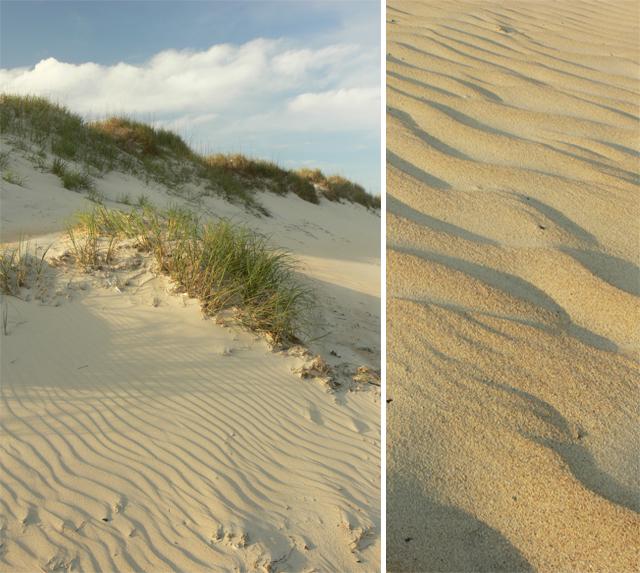 Dune & Sand