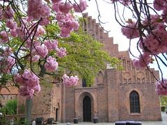 Église de S:t Petri