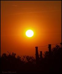 Best when shared (Kirsten M Lentoft) Tags: sunset orange fence denmark silhouettes jutland blvand blaavand abigfave anawesomeshot colorphotoaward superaplus aplusphoto betterthangood kirstenmlentoft newgoldenseal