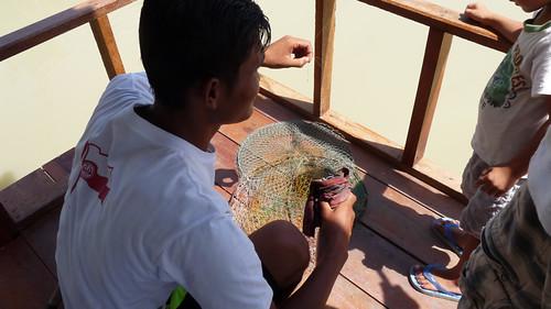 Koh Samui Skylake fishing park コサムイ 淡水魚 釣り0008