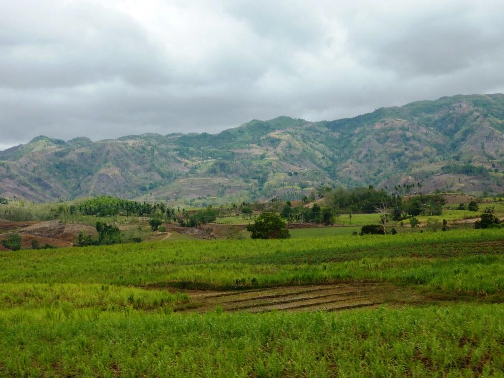 Negros-Dumaguete-Mabinay-Bacolod (126)