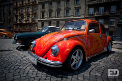 """Belgrade Bugs • <a style=""""font-size:0.8em;"""" href=""""http://www.flickr.com/photos/54523206@N03/5745976372/"""" target=""""_blank"""">View on Flickr</a>"""