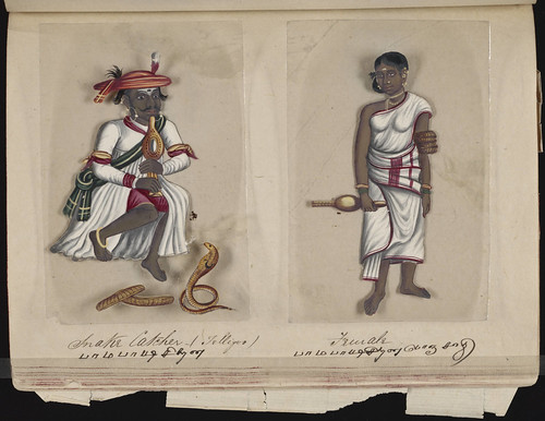 Snake catcher (Telligoo) - Female, Madura, 1837