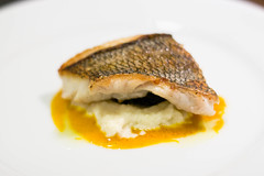 black sea bass by embem30