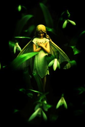 A spring fairy tale