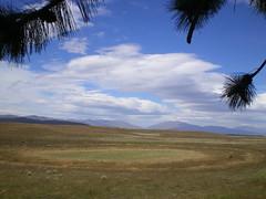 IMGP1918 (CloudyEye BlueSky) Tags: nz southisland tekapo
