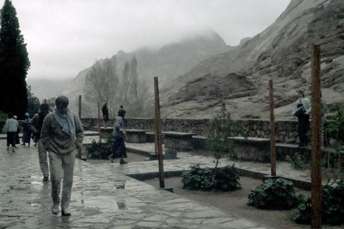 2d23: Rain in Sinai