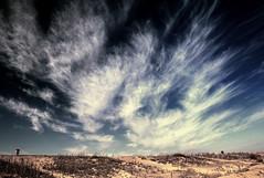 Nature...... (Jacqueline Harte) Tags: uk blue sky cloud beach wind norfolk 2009 jacquelineharte sensationalphoto