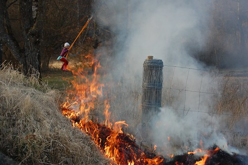 Linn gungar bakom elden
