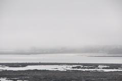 Sunderland is missing (quintinsmith_ip) Tags: mist beach misty northsea roker eastermonday rollingin southbents whitburnsands whitburnsteel