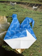 galinha dos ovos de ouro II