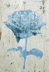 flower (detail) (jk.1971) Tags: streetart graffiti glasgow stickers 230409