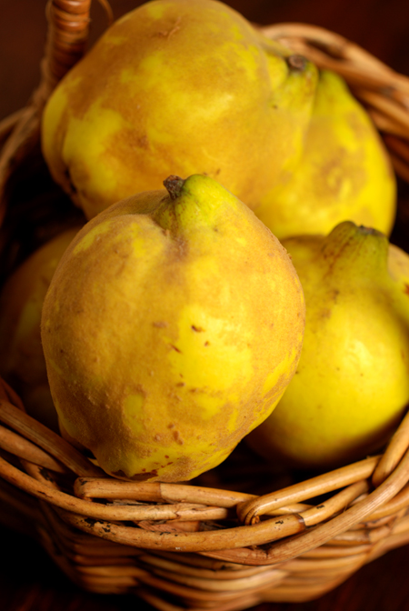 Quinces© by Haalo