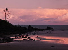 Rocks in the setting sun (ejsing) Tags: ocean sunset sea sky abstract tree art beach water beautiful sunrise reflections island coast amazing rocks long exposure paradise alone skies loneliness silent purple stones australia melbourne palm resort single lonely unreal tranquil unrealistic