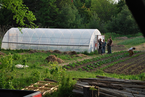 People meandering in around the hoop house