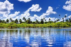 Pontal de Maracape - Porto de Galinhas (Omar Junior) Tags: blue sky reflection verde green praia water yellow azul brasil reflections landscape geotagged surf foto pentax photos d paisagem amarelo porto photographs grama fotos junior beaches recife arvore omar ist turismo rvore reflexo cavalo ceu pousada pernambuco pontal praias playas pentaxistd paraso marinho portodegalinhas jangada galinhas muroalto brancas macara coqueirais manguezal maracaipe maracape ipojuca pontaldemaracape surfpoint pontaldomaracape xalesdemaracaipe portodegalinhaspernambucobrasil pousadabrisas geo:lat=8517363 geo:lon=35004158