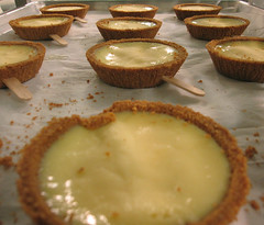 Becoming Swingled, Ready for Dipping (stevesauthentic) Tags: pie frozen key lime chocolatedipped keylimepie belcolade swingletrade