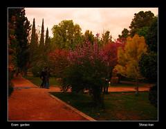 eram garden 1 (shafiei...333) Tags: people flower color green nature girl garden persian spring iran persia shiraz iranian pars fars eram eramgarden shafieisoork abolfazlshafieisoork