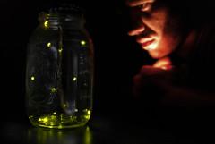 255/365 - capturing light in jar.