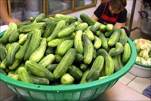 Cucumbers Awaiting Their Fate