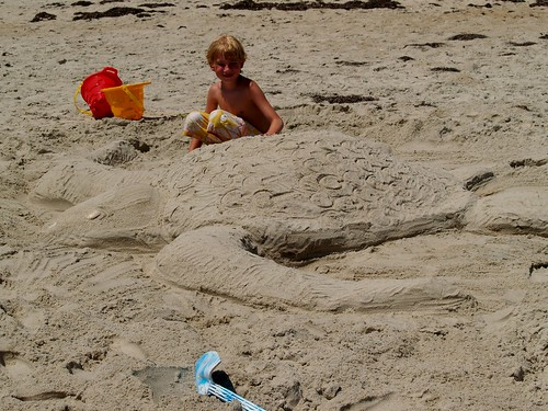 J with Sand Turtle