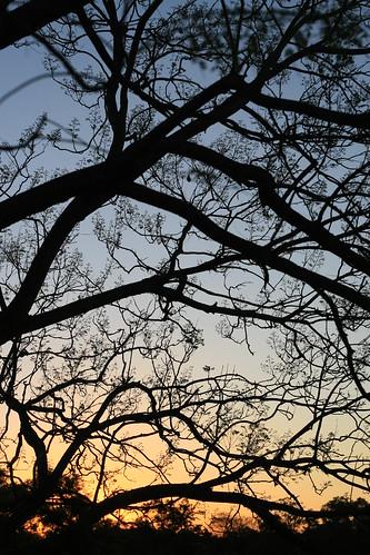 Jindalee Sunset 24/09/09