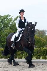 DSC_5039-70 (Ton van der Weerden) Tags: horses horse de cheval van der nederlands belges ton draft chevaux belgisch trait lunteren jeugddag trekpaard trekpaarden weerden kvth
