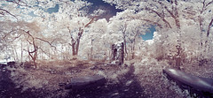 PanoC (Excaliber2013) Tags: panorama ir infrared falsecolor lifepixel marshlandsconservancy