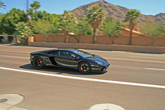 black Aventador (huntermacqueen) Tags: arizona white black silver palms grey drive royal exotic lamborghini sv giro gallardo saleen s7 superleggera 2011 lp640 lp560 aventador lp670