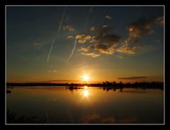 VI00005 (lil.allie photographies) Tags: landscape swan coucherdesoleil flore signes etang vivy