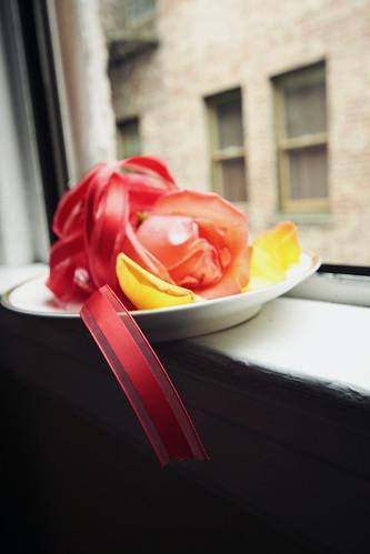 Roses 25