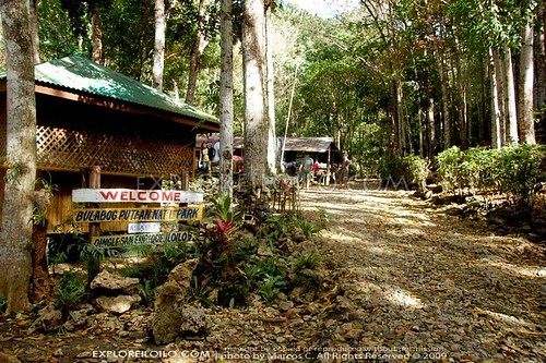 Bulabog Putian National Park   Iloilos Protected Natural Reserve