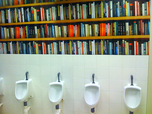 Fake bookshelf in toilets by lloydi.