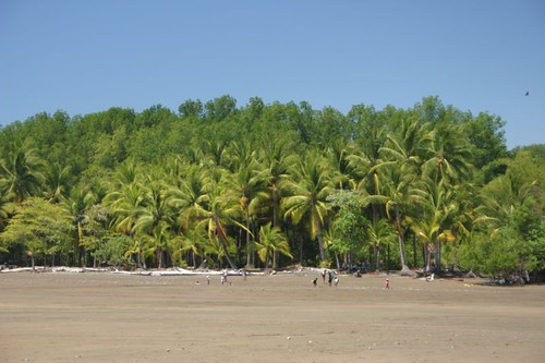 Playa Uvita on Costa Rica's Pacific coast...