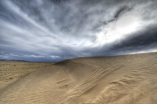 Sand in the West Mesa