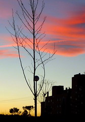 COLORES DE MADRID (pibepa) Tags: madrid espaa fotosencadenadas atardecer spain espanha europa eu cielo nubes espagne spanien spagna spanje iberia spania  hispania spagne elcapricho hispanio   lacadenademadrid lcdm pibepa