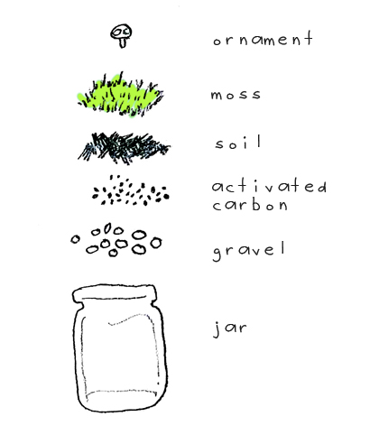 terrarium_diagram