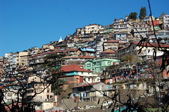 the most overpopulated mountainside city in the world (grannie annie taggs) Tags: india shimla fabulous platinumphoto earthasia