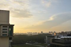 DSC_9802 (Slow's Image) Tags: nikon singapore d300 2470