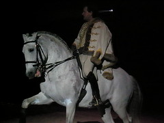 Lusitano dressage show (Donkeyzzjehluvertjehzz) Tags: horse germany cheval pony shire pferde pferd duitsland paard lusitano pferden kln chevals