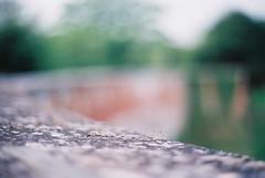 Curvy bridge (Peter Weller) Tags: bridge 50mm suffolk olympus ufford olympusom2n om2n