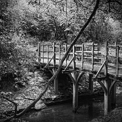 Pooh Bridge Mono (Nick J Stone) Tags: bridge sussex east pooh winnie poohsticks hartfield ©nickstone