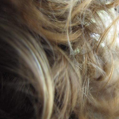 Le masque de la gélatine de la chute des cheveux