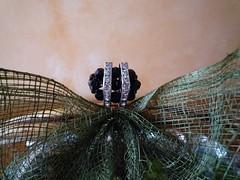 anillo negro (pilar44) Tags: anillos