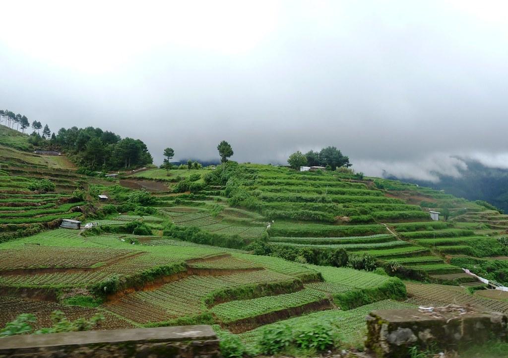 Route-Sagada-Baguio (103)