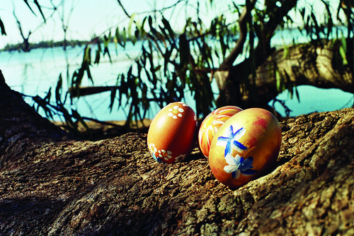 Frohe Ostern! Happy Easter! (Australia 2008)