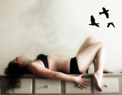 fly with me.. (*Kristene) Tags: new two white black birds is crazy day with bright very room year almost 365 done secondyear 356