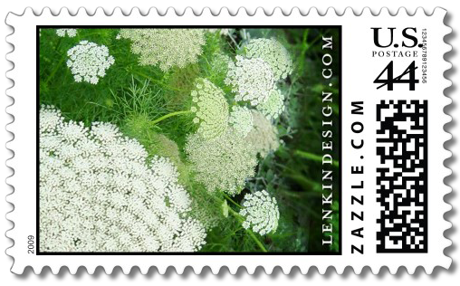 Queen Anne's Lace stamp