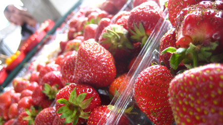 Strawberries at Jean Talon Market