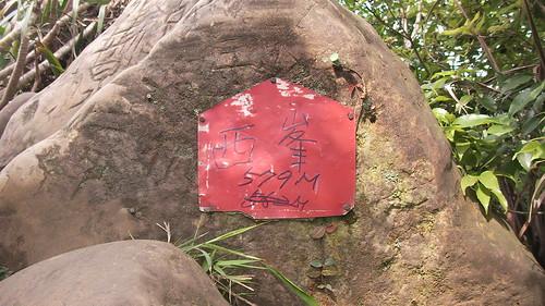 皇帝殿登山步道_11_到達西峰頂了_2011_05_07